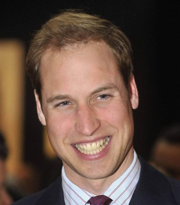 Prince William Net Worth Therichest