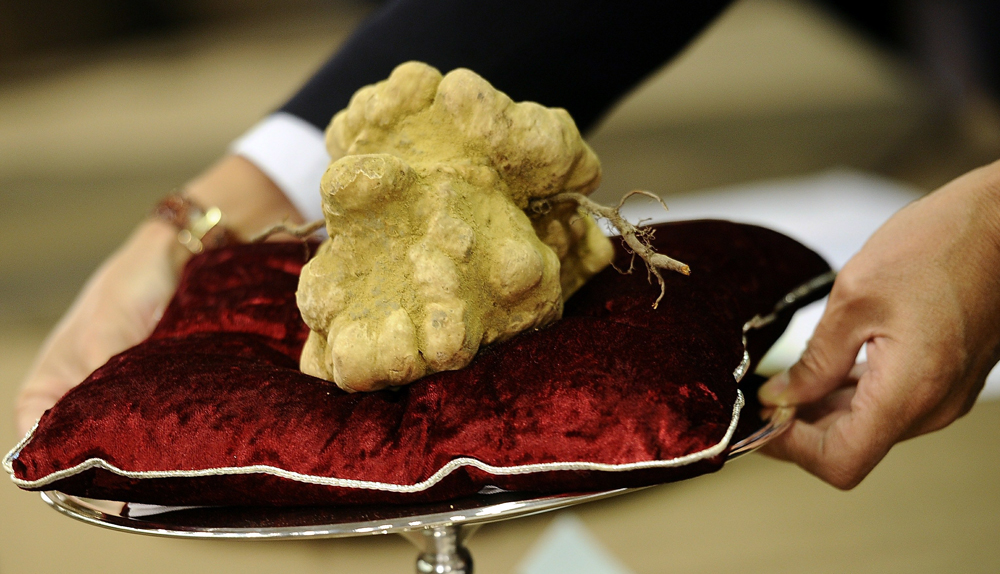 The top 10 most expensive food in the world therichest - Top 10 cuisines of the world ...