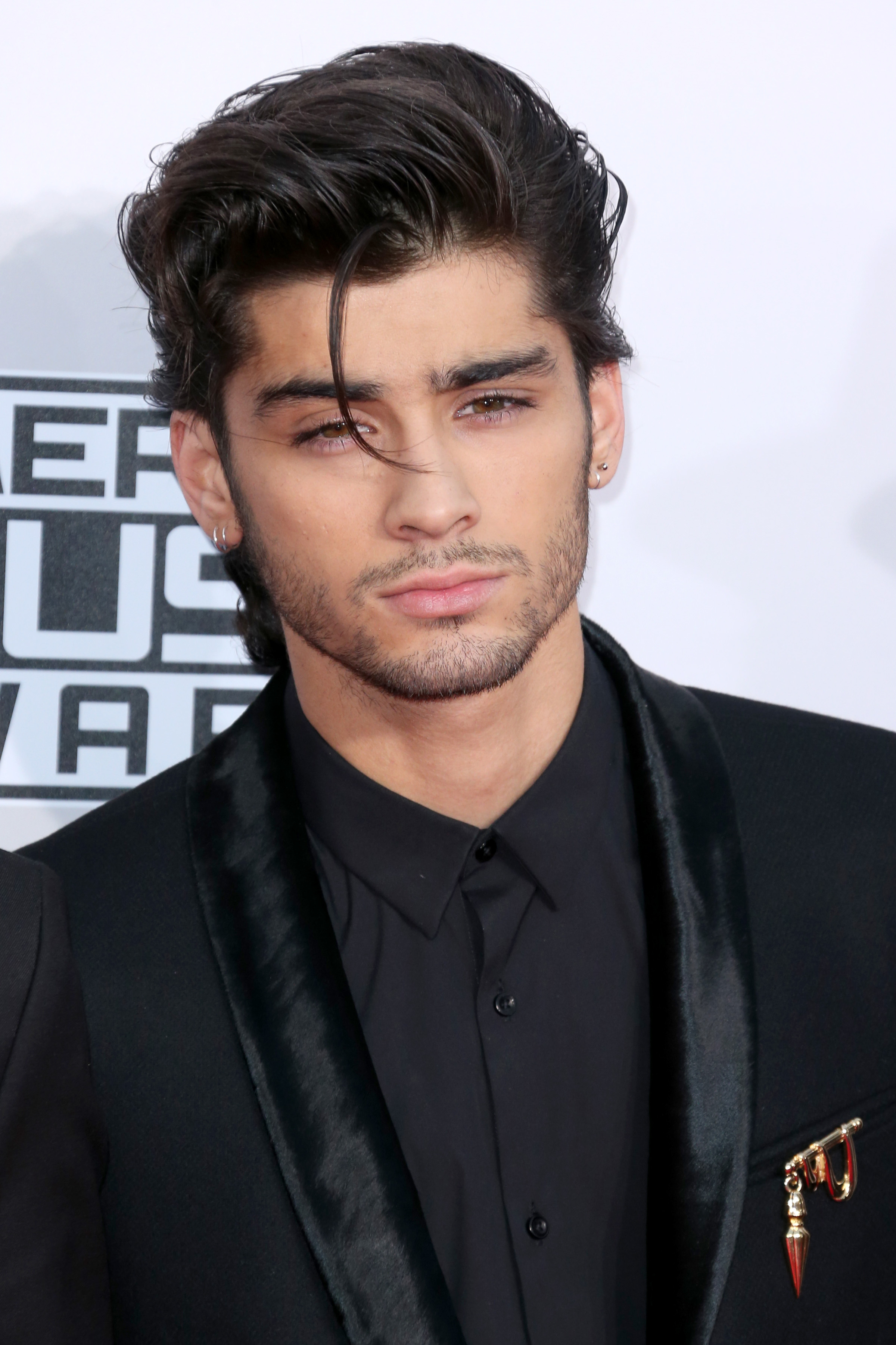 10 Reasons Why Zayn Malik Will Be More Successful Than One ...