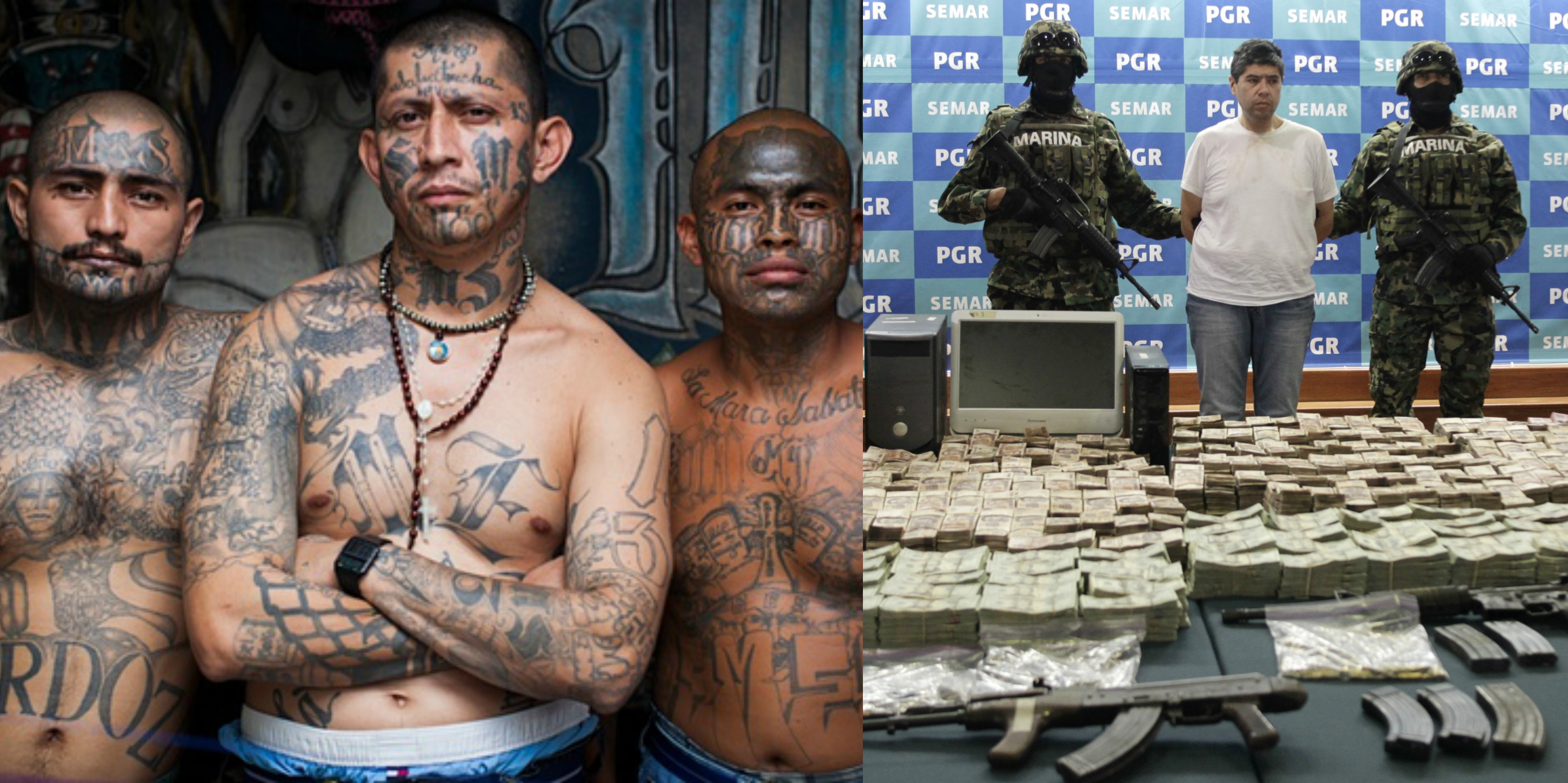 Mexican Drug Cartel Killings 15 Disturbing Facts About
