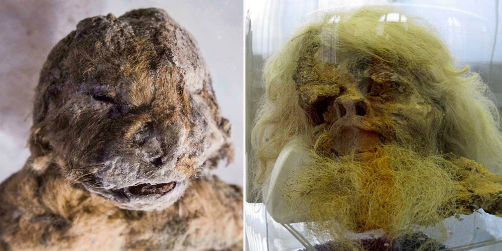 15 Creepiest Things Found In Caves