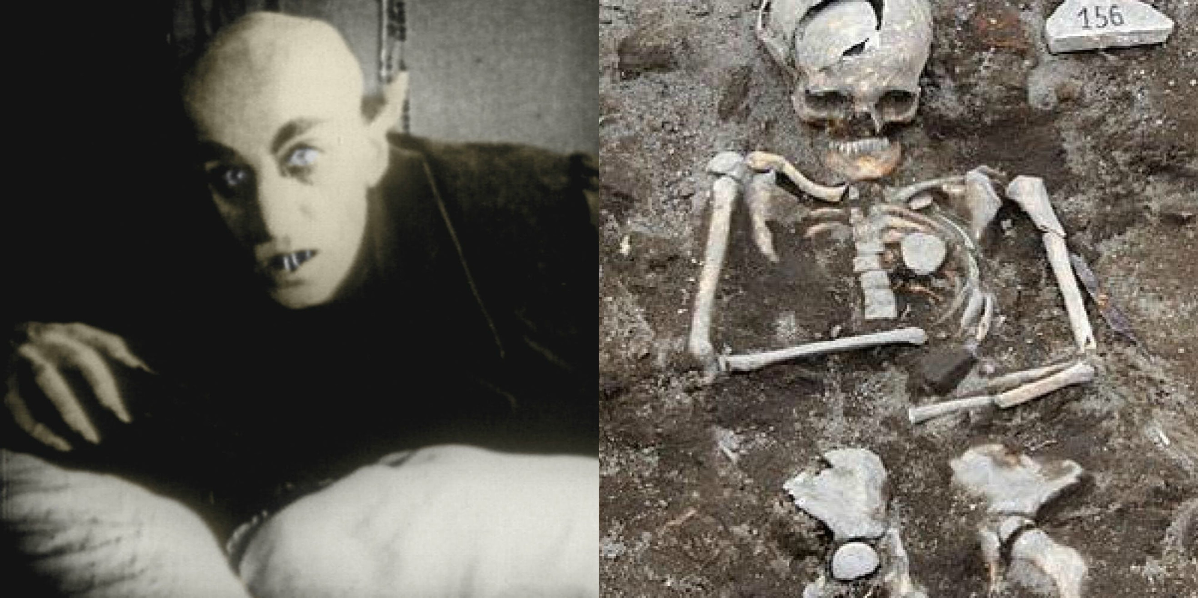 real cases of vampires throughout history