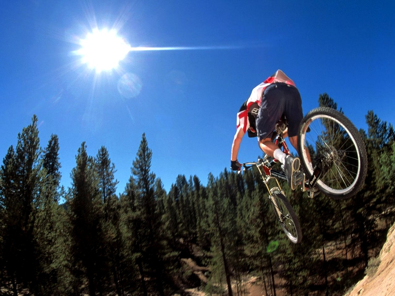 Mountain Bike: The Best Tips for Beginners