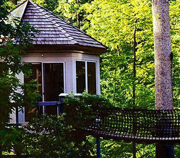 Top 10 Most Expensive Treehouses In The World